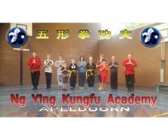 Ng Ying Kungfu Apeldoorn